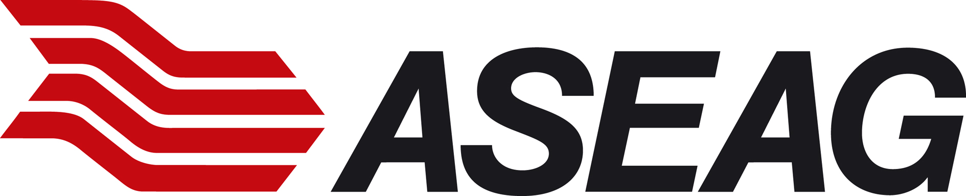 ASEAG Logo ohneClaim